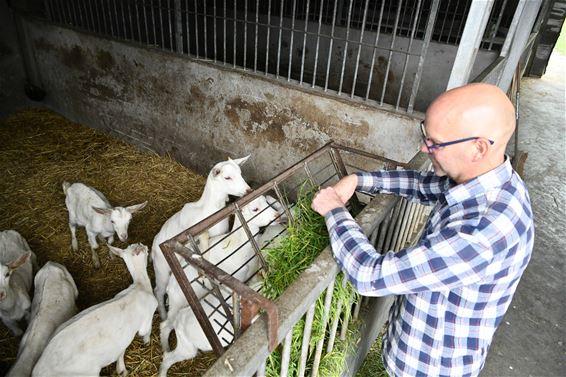 'De liefde voor dieren gaf me zin in het leven'