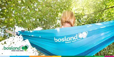 Hangmatactie in Bosland