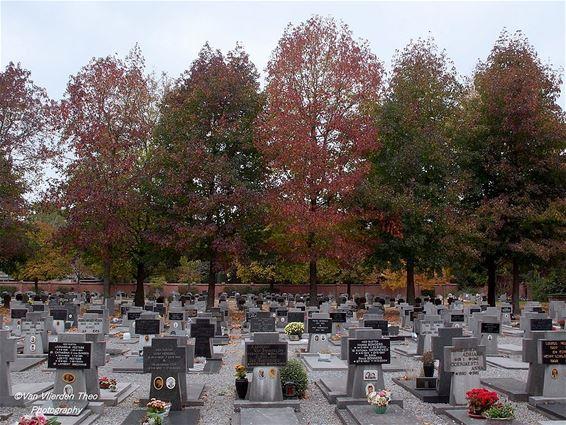 Herfstkleuren op het kerkhof