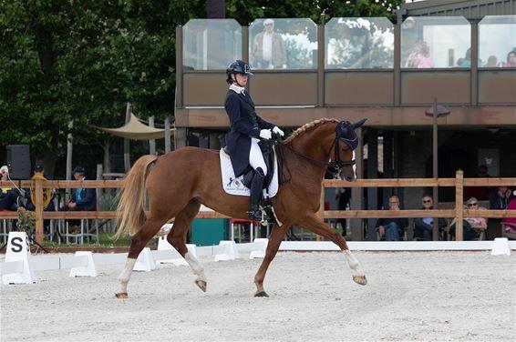 Inge Heylen wint dressuurwedstrijd