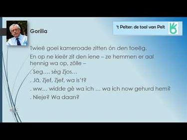Liek 'ne gorilla