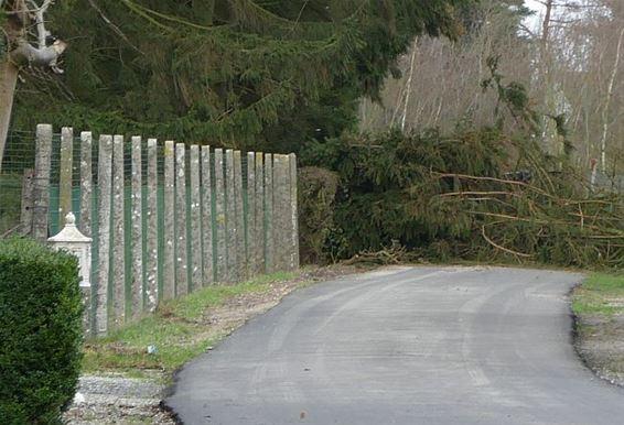 Storm: Park Dommelhof en Achelsendijk afgesloten