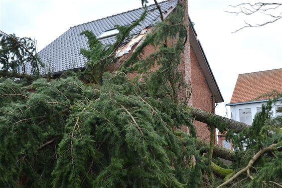 Veel stormschade in onze stad